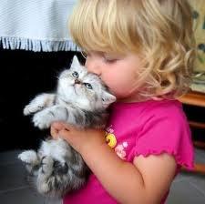 Стоит ли заводить котенка для ребенка?